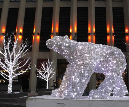 With a -25 C windchill blowing in downtown Winnipeg Thursday morning it does feel like weather a polar bear might enjoy. This light display is in front of the Richardson Buidling.