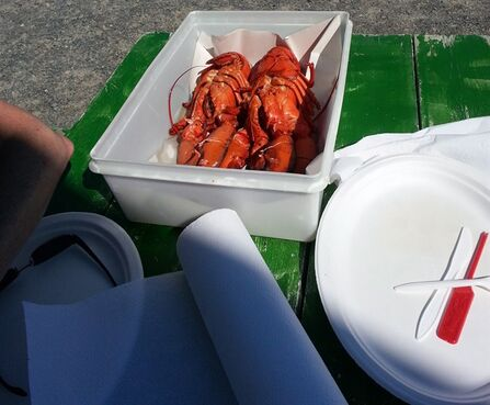 Roadside lobster pounds in Nova Scotia don't stand on ceremony, serving a picnic table feast of lobster in a plastic tub, accompanied by nothing more than butter, a paper plate, plastic utensils and a roll of paper towels. THE CANADIAN PRESS/HO-Clive Williams
