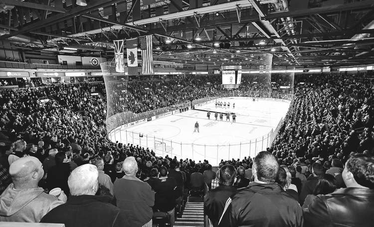 IceCaps fans pack Mile One Stadium in St. John's for a game. IceCaps CEO Danny Williams says there is a huge demand for high-calibre hockey in the city.