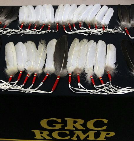 PHIL HOSSACK / WINNIPEG FREE PRESS FILES</p><p>Eagle feathers will be placed at RCMP detachments in Manitoba.</p>