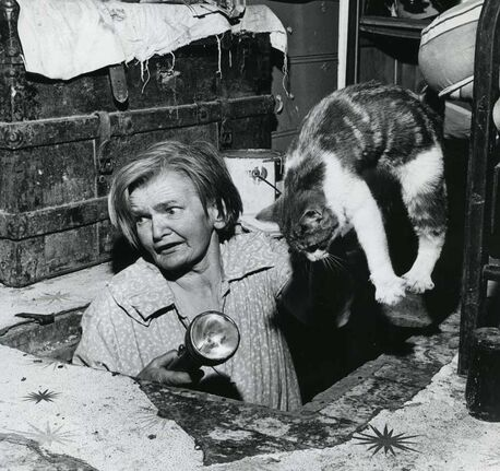 Bertha Rand lifts a cat after it got into the cellar in 1966.