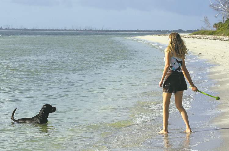 Sarah Ranes, of Safety Harbor, prepares to throw a tennis ball to her dog Strider on a dog-friendly beach at Fort DeSoto Park in St. Petersburg, Fla.