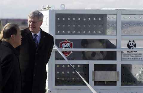 Prime Minister Stephen Harper chats with Chinese Ambassador Zhang Junsai at Pearson Airport in Toronto on Monday March 25, 2015 as he welcomes Da Mao, one of two Giant Pandas on loan to Canada from China. THE CANADIAN PRESS/Frank Gunn