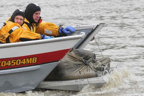 A Winnipeg water rescue crew brings a body in a bag to shore on Sunday.