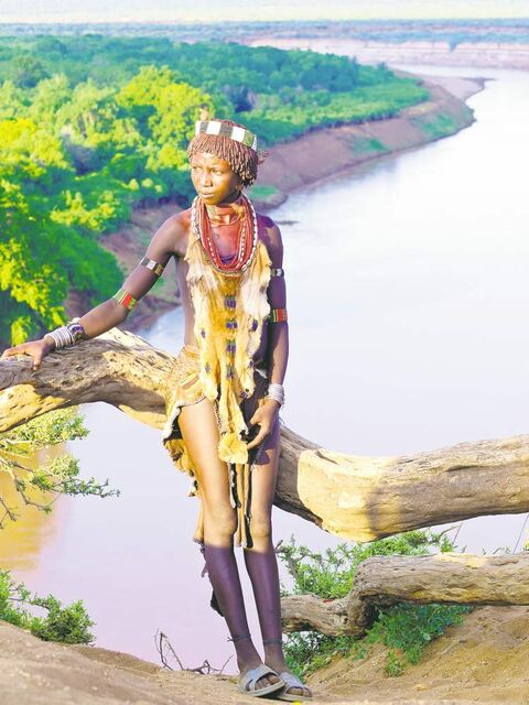 Traditionally decorated Hamer tribe woman leaning on a tree trunk on the edge of Omo river canyon while visiting Karo tribe.