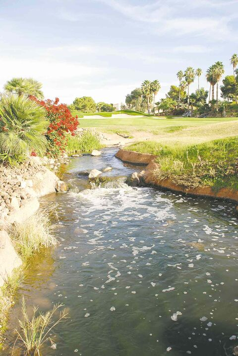 Superstitious Springs offers most  non-desert-like golf.