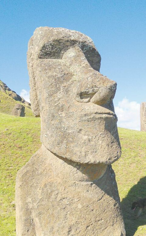 Close to 1,000 stone statues, or moai, can be found on Easter Island. Some are more than 1,000 years old.