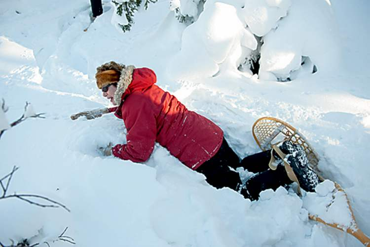 Reporter Alexandra Paul tumbles into thigh-high snow. 'Beached belugas must feel like this,' she writes.