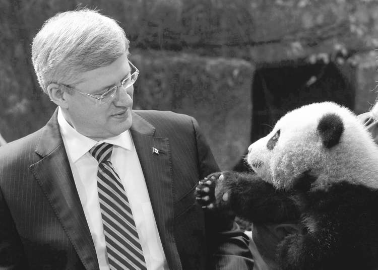 Adrian Wyld / Canadian Press archives