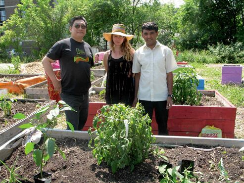 (From left) Vice-president of Centennial Community Improvement Association Gord Dong, Frame Arts Warehouse garden co-ordinator Tanya Blatz and Centennial resident and community gardener Shree Chamlagai in the garden outside of Freight House.