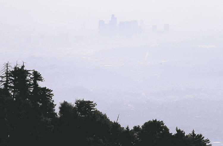 More than a kilometre above the city, sensors atop Mount Wilson collect information about Los Angeles' carbon footprint.