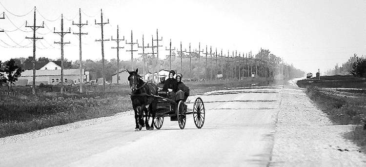 Members of a traditional Mennonite community travel by horse and buggy.