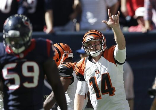 Cincinnati Bengals' Andy Dalton (14) celebrates a touchdown pass to teammate Mohamed Sanu during the first quarter of an NFL football game against the Houston Texans, Sunday, Nov. 23, 2014, in Houston. (AP Photo/David J. Phillip)