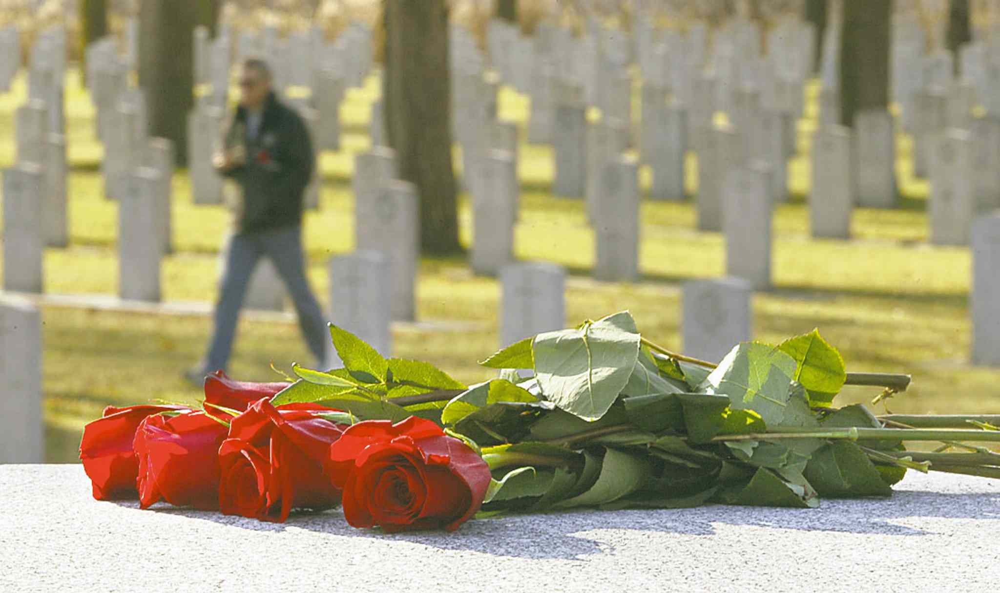 Winnipeggers who want to attend a Remembrance Day ceremony can attend the main ceremony at the RBC Convention Centre Winnipeg or any of the smaller events throughout the city.
