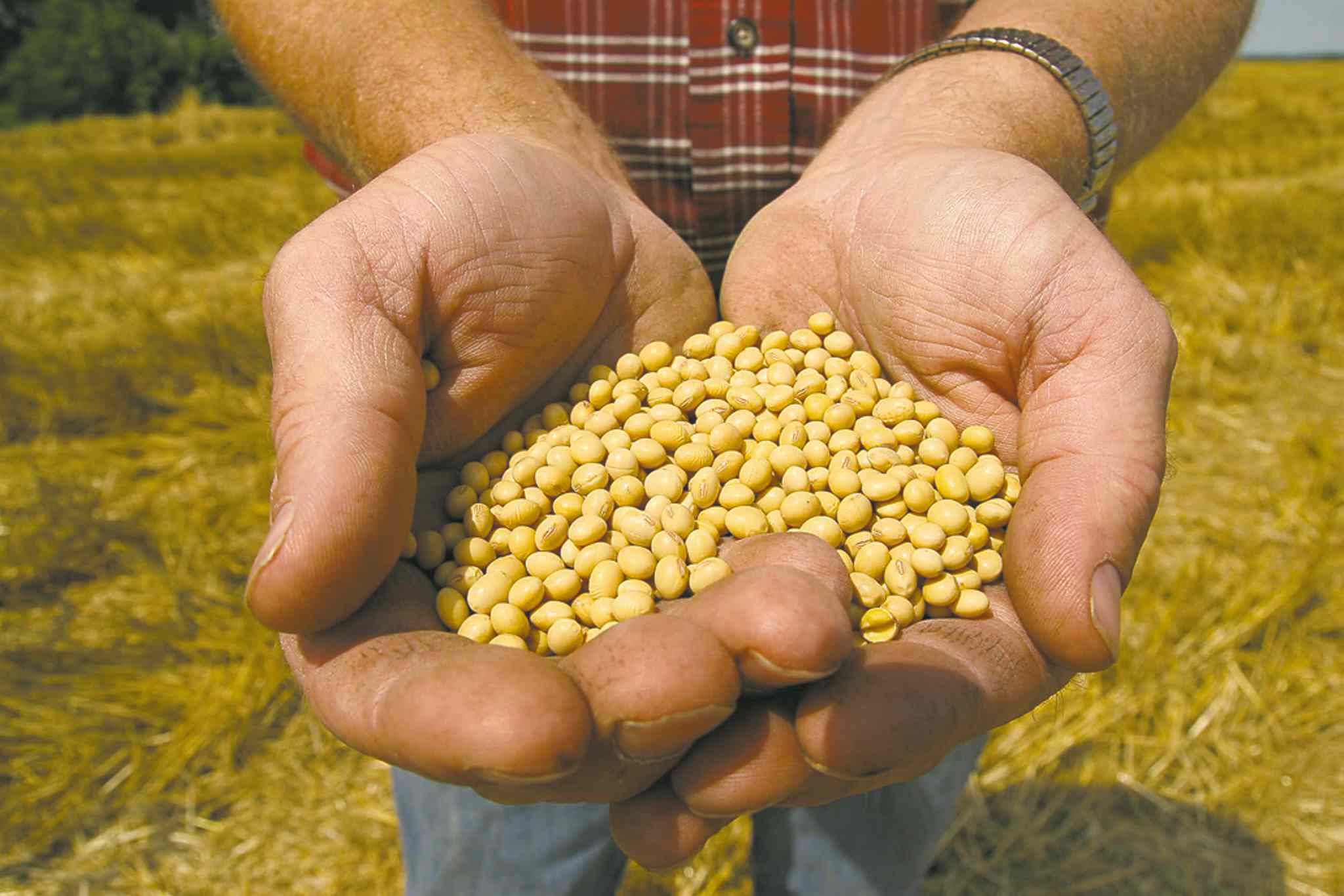 Dan Gill / The Associated Press Archives