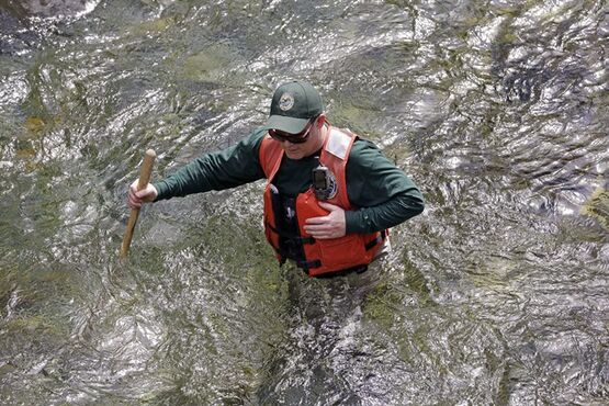 In this photo taken Tuesday, April 15, 2014, fisheries biologist Pete Verhey looks for evidence of fish eggs as he wades nearly waist-deep in Squire Creek, a tributary of the North Fork of the Stillaguamish River, near Darrington, Wash. Finding a spawning nest, called a redd, is an encouraging sign that steelhead trout may be making their way upstream from Oso., Wash., above where a massive landslide decimated a riverside neighborhood a month ago and pushed several football fields worth of sediment down the hillside and across the river. As search crews continue to look for people missing in the slide, scientists also are closely monitoring how the slide is affecting federally endangered fish runs, including Chinook salmon and steelhead. (AP Photo/Elaine Thompson)