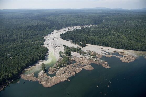 Contents from a tailings pond is pictured going down the Hazeltine Creek into Quesnel Lake near the town of Likely, B.C. on August, 5, 2014. Four months after a torrent of mine water and waste gushed into two south-central British Columbia lakes, the province says the mine's owner is only at the forefront of a clean-up that is expected to take years. THE CANADIAN PRESS/Jonathan Hayward