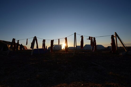 Arctic char dries at a camp on the outskirts of Gjoa Haven, Nunavut on August 20, 2013. THE CANADIAN PRESS/Sean Kilpatrick