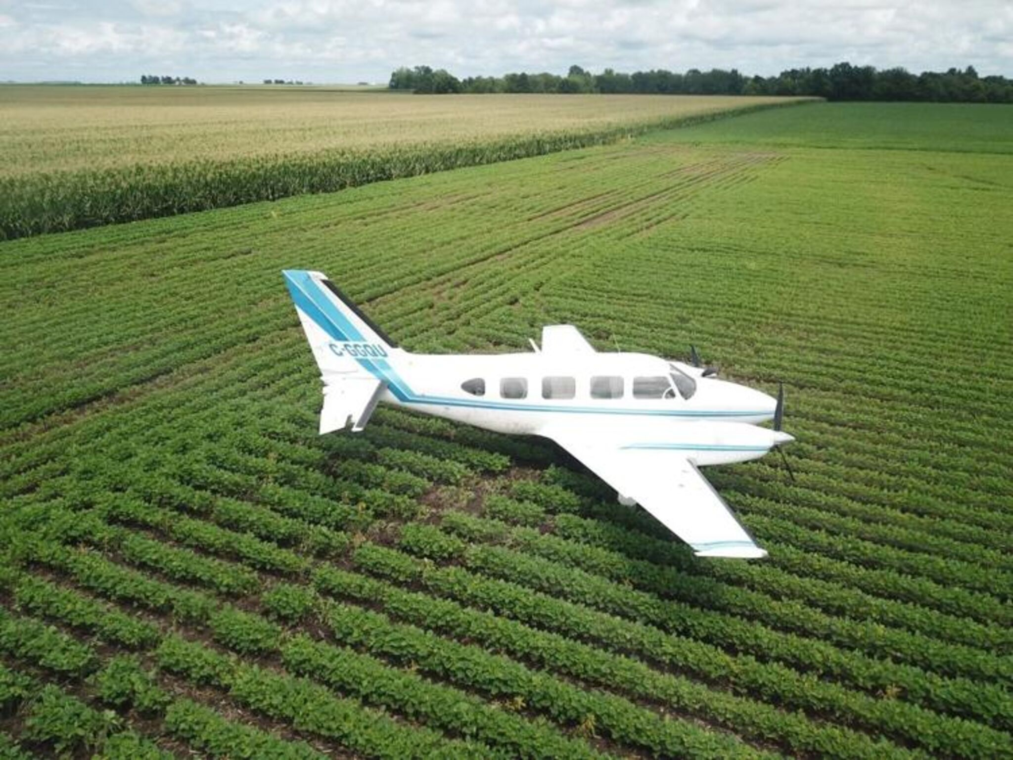 The plane came to rest in a soybean field.