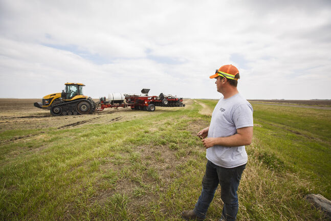 Penner grows canola, wheat, oats, soybeans, corn, ryegrass and alfalfa on 4,000 acres near Elm Creek with his dad and younger brother. (Mike Deal / Winnipeg Free Press)