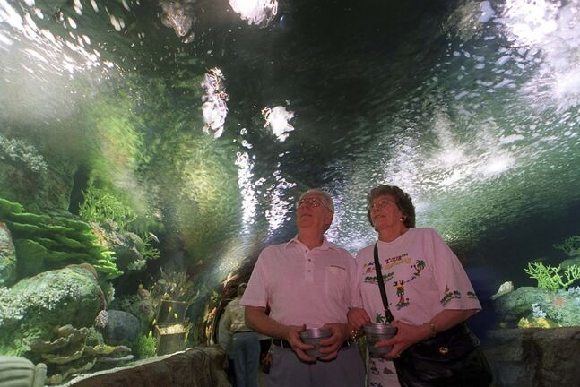 JEFF DE BOOY / WINNIPEG FREE PRESS FILES</p><p>The walk-through Galleon Reef Aquarium, at one time home to sharks and 450 tropical fish, opened in 1999.</p>