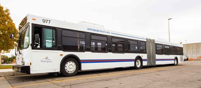 Winnipeg Transit purchased 20 pre-owned, 60-foot articulated buses from New Flyer Industries at less than 10 per cent of their new cost of $625,000.