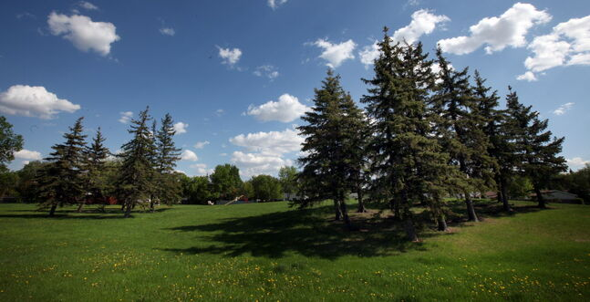 Many nearby residents oppose turning Crestview's Voyageur Park into an off-leash dog park.