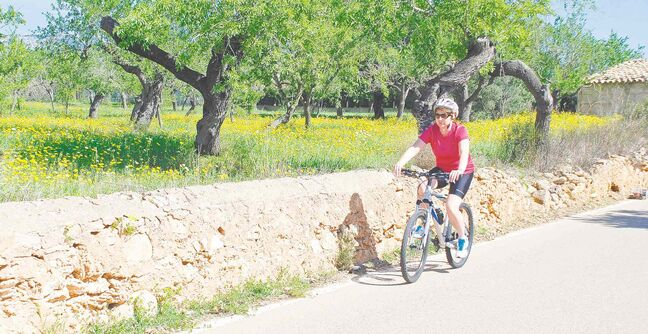 Cycling is a year-round sport on Majorca, but spring and fall are the optimal months when the weather is warm, but not too warm. In spring you can see the beautiful blooms of the island's wildflowers.
