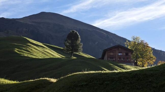 The low autumn sun illuminates a slope in St. Antoenien im Praettigau, in the canton of Graubunden, eastern Switzerland, Thursday, Oct. 11, 2012. (AP Photo/Keystone, Arno Balzarini)