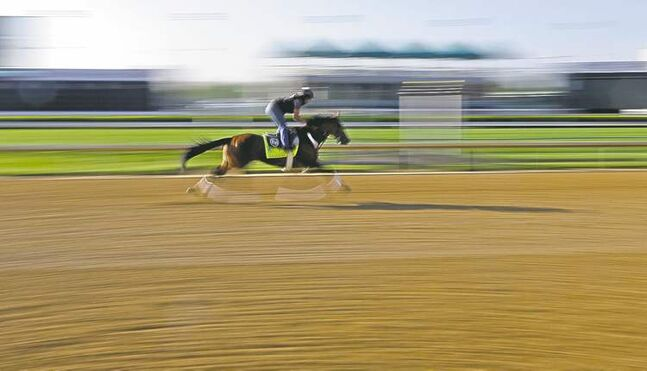 Goldencents gets in a workout at Churchill Downs on Tuesday. The colt with Manitoba connections is third-favourite at 5-1 heading into Saturday's Kentucky Derby.
