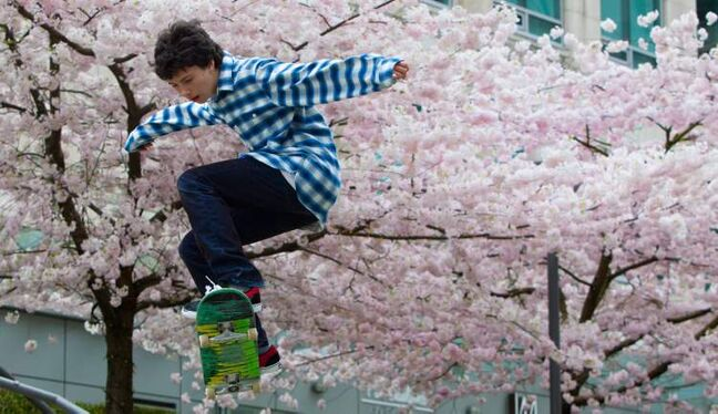 Now-profitable products such as skateboards were invented  by amateurs.