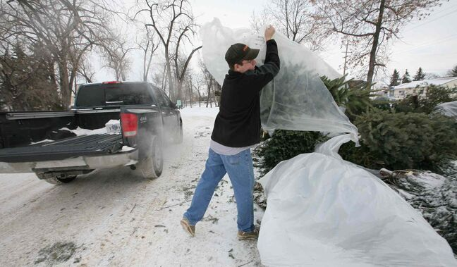 The city has numerous locations at which people can recycle their Christmas trees.