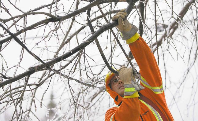 A worker clears branches from power lines in Toronto after the ice storm downed trees and cut off electricity.