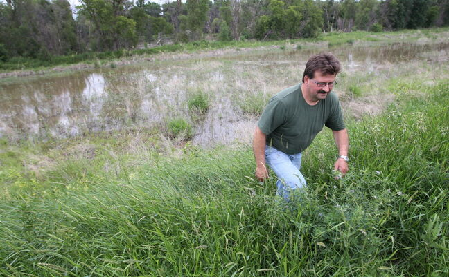 Willy Foth walks along his existing dike. He's still steamed he received no compensation after the 2011 flood.