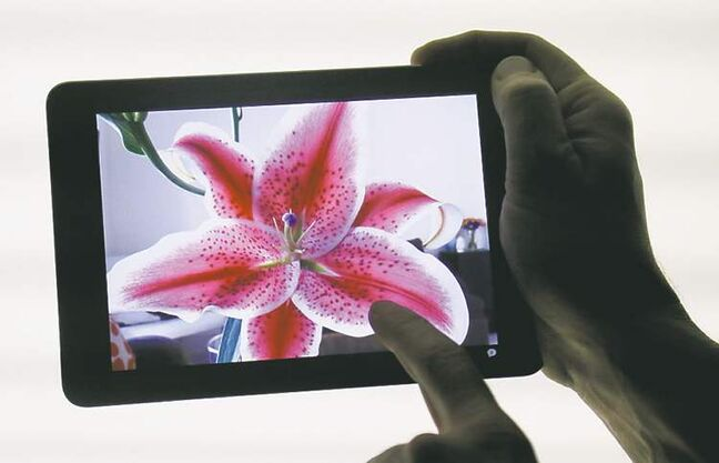The iPad Mini is shown in San Jose, Calif., Tuesday, Oct. 23, 2012. The device has a screen that's about two-thirds the size of the full-size model, and Apple says it will cost $329 and up. (AP Photo/Marcio Jose Sanchez)