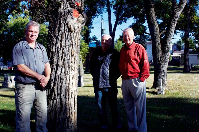 International Society of Arboriculture Prairie chapter director Matt Vinet, Elmwood Cemetery manager Bob Watling, and Friends of Elmwood Cemetery executive director Robert Filuk, are shown with a tree marked to be removed because it is infected with Dutch elm disease.