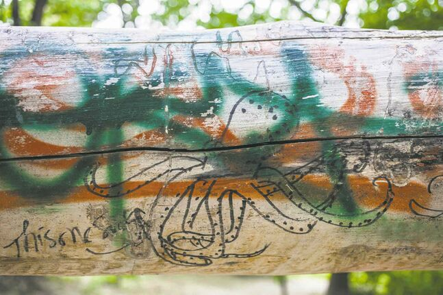 Graffiti on a fallen tree along the Assiniboine river walk (GREG GALLINGER / WINNIPEG FREE PRESS 2014)