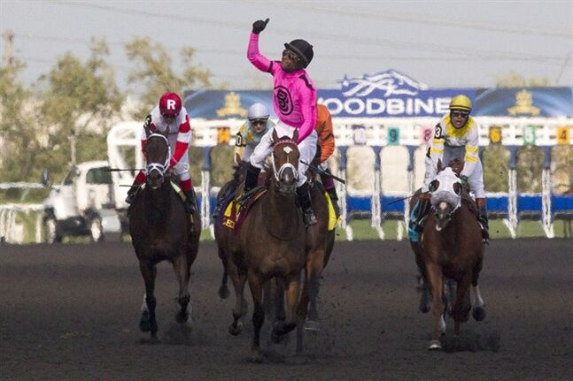 Patrick Husbands riding Lexie Lou celebrates after winning the 155th Queen's Plate at Woodbine Racetrack in Toronto on Sunday July 6 , 2014. THE CANADIAN PRESS/Chris Young
