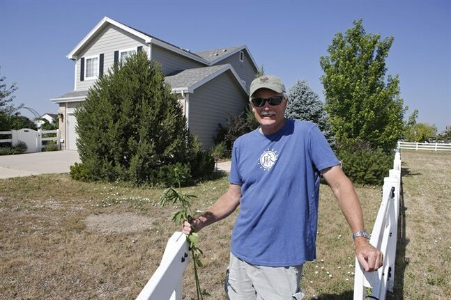 This July 3, 2014 photo shows Jim Denny posing in front of his home in Brighton, Colo. Denny learned the hard way that he needed neighbors' permission before growing hemp. He learned about marijuana's non-intoxicating cousin at an event earlier this spring and decided to try the crop on a 75-by-100-foot plot in his yard. But Denny's hemp plot ran afoul of his homeowners' association, which ruled the hemp experiment unacceptable. (AP Photo/Ed Andrieski)