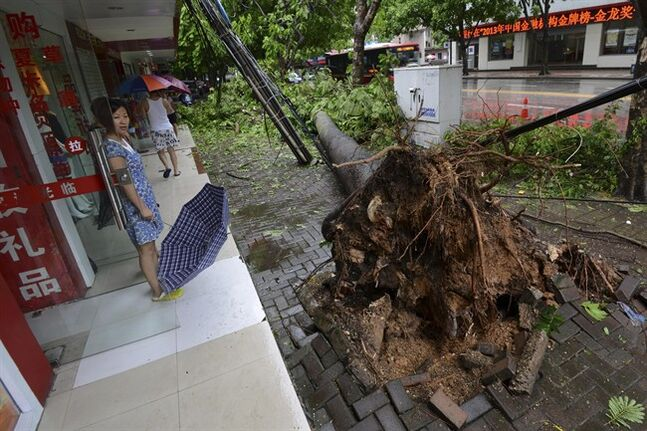 In this photo taken Saturday, July 19, 2014, a woman looks at a tree uprooted by Typhoon Rammasun in Nanning in south China's Guangxi Zhuang Autonomous Region. The strongest typhoon to hit southern China in four decades has killed more than a dozen people, the government said Sunday. (AP Photo) CHINA OUT