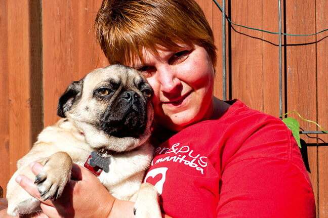 Two-year-old Penelope pictured with Shaila Wise, a Boston Terrier & Pug Rescue executive committee member.
