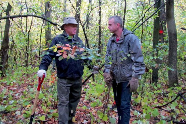 Recently-appointed Minister of Education James Allum (right) alongside Allan Barry of the Wildwood Heritage and Conservation Committee during a buckthorn removal effort at Crescent Park.