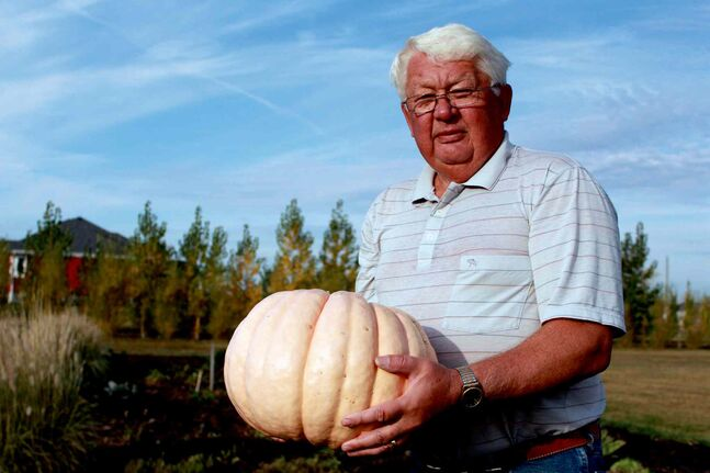 Stan Soltes stands in front of his now-empty garden, holding the very last of his pink pumpkins.