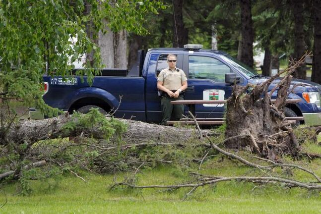 A tree fell on top of and killed a tent camper from Quebec  at Falcon Lake Campground. June 26, 2013