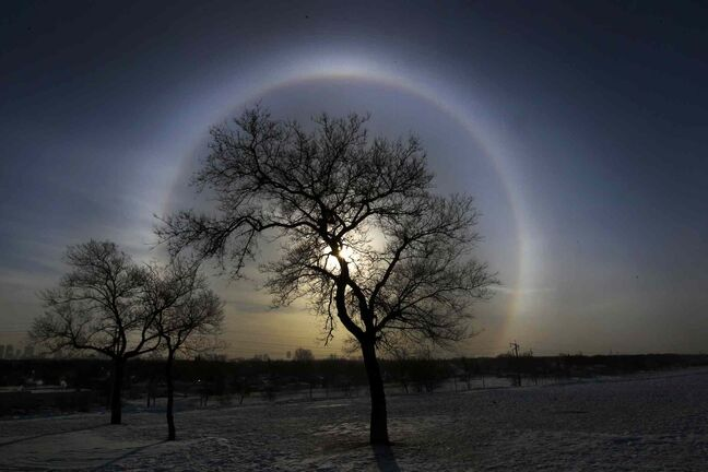 A halo appears around the sun in Winnipeg Monday morning during extreme cold temperatures on the top of a hill in Westview Park.
