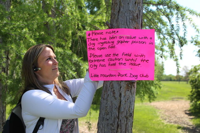 Little Mountain Park Dog Club president Kristy Greening puts up a warning sign for dog owners Tuesday.