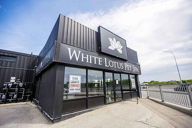 The recently closed White Lotus Pet Spa on Donald Street.