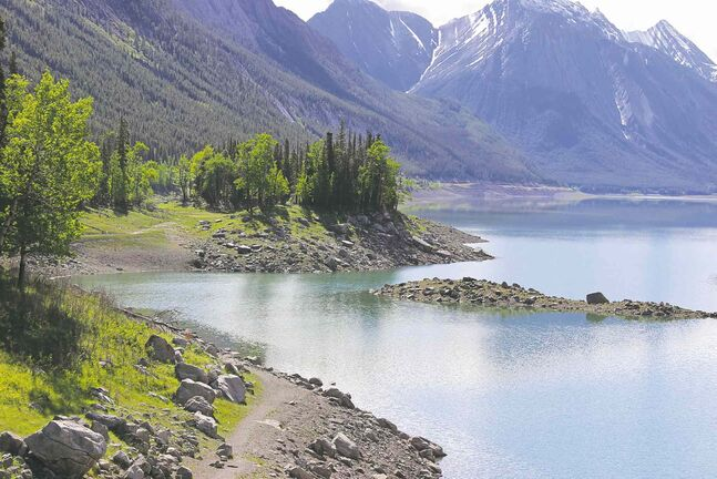 Medicine Lake fills up with glacial melt every spring and drains like a bathtub every summer. The water falls through a series of subterranean limestone caves to fill lakes in Jasper with brilliant turquoise waters.