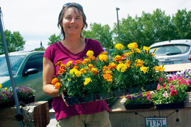 Cornelia Seeholzer of Cornelia's Greenhouses in Cooks Creek displays some flowers during the Concordia Farmers Market opening day on June 13. The market, which is held in the Concordia Place parking lot, will also be held July 11, Aug. 8, and Sept. 5 from 11 a.m. to 3 p.m.