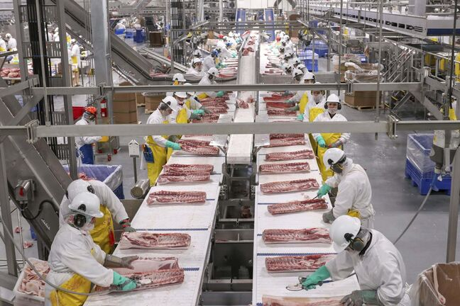 The loin line in HyLife's Neepawa processing plant. (Supplied)</p>